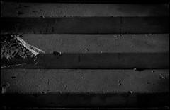 DL LVI ([ Time - Beacon ]) Tags: tb monochrome blackandwhite blackwhite bnw bw staicase stairs steps decay texture minimal