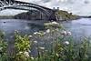Ca  New Brunswick  Saint John Baia di Fundy (16