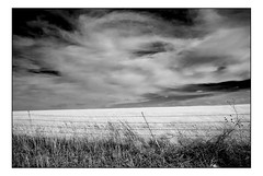 Oklahoma Field in Winter (Terry L. Olsen) Tags: blackandwhite oklahoma landscape sky clouds lightroomclassiccc