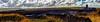 Barns Ness 06 Oct 2016-0000-Edit.jpg