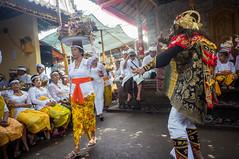 (kuuan) Tags: manualfocus mf voigtländer15mm cvf4515mm 15mm bali indonesia sonynex5n festival temple kids girls traditionaldress kebaya dancers audience fun documentary mash dance
