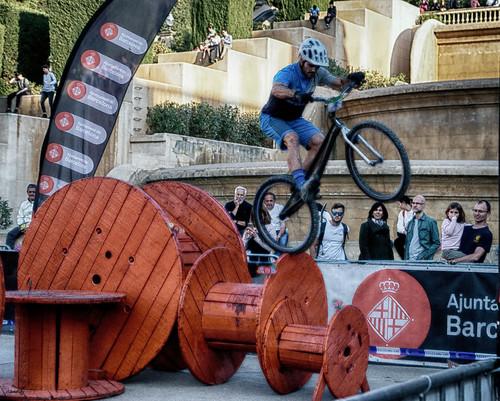 Ciclo trial II