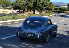 AC Aceca - 1954 (SASSAchris) Tags: ac aceca voiture anglaise 10000 tours castellet circuit ricard