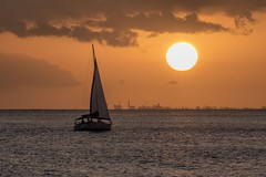 Sailing at Sunset (Fletch in HI) Tags: nikon d5600 tamron 16300 sunset sky oahu honolulu hawaii ocean clouds water boats buildings