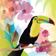 Tropicality Toucan (DobingDesign) Tags: illustration toucan bird tropical colours colourful colourpop multicolour bright tropicalbird beak beautiful mixedmedia watercolour vector flowers petals leaves