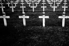 L2990554 (RG-Photographie) Tags: 35mm acros100 analog argentique cemitery cimetière film fujifilm ladoua leica leicam2 lyon nécropole summilux summilux35mmasph villeurbanne
