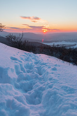 IMG_00350 (Behind Budapest) Tags: 2019 70d budapest canon hungary magyarorszag city colours hiking hill landscape mountain naplemente nature outdoor outside sky snow sundown sunset tel termeszet town urban walkingtrail winter winterphotography 500v20f