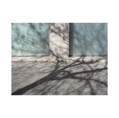 Winter shadows...  Villava ( Navarra ) (José Luis Cosme Giral) Tags: urbannature minimalism abstraction shadow light wall soil street topography concreteglassmoonandsidewalk olympus villava navarra