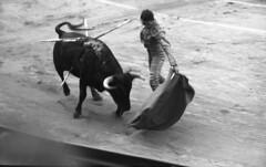Bullpen action (Arne Kuilman) Tags: lostandfound zimmermans photos photonotmine scan v600 epson holiday found gevonden leica negatives matador spain bullfighting bullfighter arena past even bull