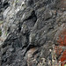 Pillow basalts (Franciscan Complex, Jurassic; Point Bonita, California, USA) 18