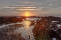 The most precious gold . (Through Bri`s Lens) Tags: devon croydebay beach sunset lowtidereflection brianspicer canon5dmk3 canon1635f4 leereversegrad