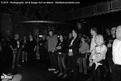 2019 Bosuil-Het publiek bij Steady State en The Animals 17-ZW