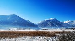 Tricolore (jimiliop) Tags: landscape hills mountains winter snow reeds trees lines series nature stymfalia plain meadow lake peloponnese greece white blue