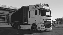 DAF XF LV (black_moloko) Tags: siawego daf latvia truck ets2 eurotrucksimulator2 monochrome