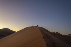 _RJS4301 (rjsnyc2) Tags: 2019 africa d850 desert dunes landscape namibia nikon outdoors photography remoteyear richardsilver richardsilverphoto safari sand sanddune travel travelphotographer animal camping nature tent trees wildlife