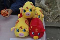 20190205 Chinese New Year Firecrackers Ceremony - 001_M_01 (gc.image) Tags: chinesenewyear lunarnewyear yearofpig chineseculture festival culture firecrackers 840