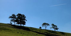 Treeline (RoystonVasey) Tags: canon eos m 1855mm stm zoom north yorkshire dales ydnp west burton wensleydale waldendale