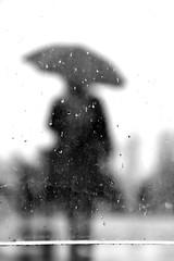 Rainy day silhouette (jaume zamorano) Tags: blackandwhite blancoynegro blackwhite blackandwhitephotography blackandwhitephoto bw d5500 gente lleida lluvia monochrome monocromo mist nikon noiretblanc nikonistas pov people pluja pluie rain raining street streetphotography streetphoto streetphotoblackandwhite streetphotograph urban urbana