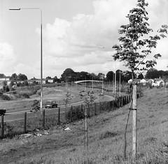 Ringway South, Basingstoke, 1979 (Cross Duck) Tags: ilfordfp4 basingstoke oldbasingstoke oldphotograph blackandwhite monochrome mediumformat ilfordfilm mamiyac220 mamiyaflex
