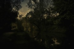 Dusk by the River (Bill Eiffert) Tags: nature trees painterly romantic pictorialism water river sunset shadows dark