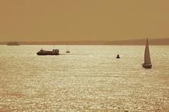 Sailboat & Hovercraft on the Solent (Art-G) Tags: boat sailboat hovercraft solent portsmouth hampshire uk canon eos7dmkii 100400lisusm seascape sundaylights