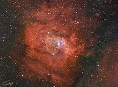 NGC7635 SHO-RGB (nicolasstephan) Tags: ngc7635 rgb sho nebuleuse ciel astro newton sbig astronomy telescope universe nebula mono tmb qsi astrodon cosmos constellation deep space dso interstellar nebulae nebulosity orion stars skies sky night mesu mesu200 science bw astronomia m42 astrometrydotnet:id=nova3196671 astrometrydotnet:status=solved