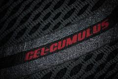 GEL CUMULUS lettering on an ASICS running shoe (Ivan Radic) Tags: asics emblem gelcumulus handelsmarke laufschuh logo marke markenzeichen schuh wappen brandname brandsymbol crest red rot runningshoe shoe sport trademark