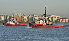 SD Shark + SD Seal (1) @ Gallions Reach 22-02-19 (AJBC_1) Tags: riverthames gallionsreach london ©ajc ship vessel boat england unitedkingdom uk northwoolwich eastlondon newham londonboroughofnewham dlrblog nikond3200 ajbc1 tug tugboat kotug kotugeuropeanharbourtowage sdseal sdshark