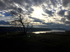 2018 YIP Day 334: Roll on... (knoopie) Tags: 2018 iphone picturemail november maryhill river columbiariver 2018yip project365 365project 2018365 yiipday334 day334