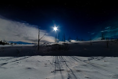 Arctic Nights (Jan Moons) Tags: bright moonlight lighting up snowy landscape moon moonshine lapland lappi levi finland nightshot nightphotography nightscape stars trees frozen winter winterwonderland nikon nikond600 d600 samyang 14mm fixed wideangle