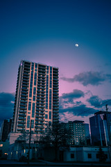 your eyes are the sky (viewsfromthe519) Tags: sunset evening sky trees silhouette winter snow ontario canada dark cold clouds skyscape london condo apartments building city downtown moon