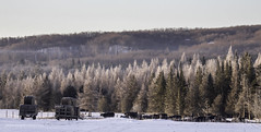 Cattle breakfast (Petoskey Drones) Tags: sunrise dawn trees cattle cows vache betail arbres foret collines hills snow winter ice frost
