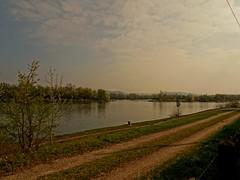 Frühling am Kreuzhof (johannroehrle) Tags: frühling deutschland donau danube donarea dunaj kreuzhof krajobraz landscape landschaft wolken wasser water natur nature natura niebo sony
