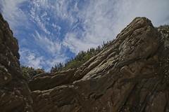Rochas e cactus (mcvmjr1971) Tags: green arraial do cabo nikon d800e lens sigma 2435 art f20 mmoraes praia farol