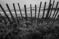 Fence on the coast (NikNak Allen) Tags: bantham bigbury burghisland island grass grasses dunes fence wood wire sea water coast ocean cliffs seascape waves smooth longexposure grey greys black white blackandwhite early morning pov nd 10stop landscape beach sand