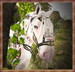 I'm Ready For My Close Up Mr 0rco ! (0rco) Tags: horse showhorse headshot portrait nature secondlife poser viking
