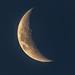 Crescent Moon-1