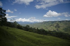 The Lush Green of the Cordillera Central (speed6ump) Tags: pan american highway tour bicycle bike touring adventure colombia south america cauca andes mountains cordillera central