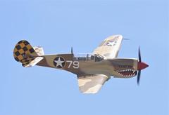 Curtiss P-40N Warhawk #79 S/n.42-105192 C/n.28954 NL85104 (GEM097) Tags: airplane aircraft planesoffame chinoca airshow curtissp40warhawk nl85104