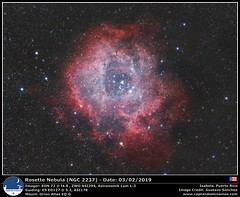 NGC 2237 - Rosette Nebula (gustchenchi) Tags: rosette nebula ngc2237