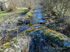 Río Moros. El Espinar, Segovia. (Airbeluga) Tags: paisajes segovia nature naturaleza delarisca castillaleón senderismo españa sendcerrocaloco