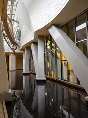 Paris 2019: Pillars and curves (mdiepraam) Tags: paris 2019 fondationlouisvuitton architecture building grotto pond reflection pillar