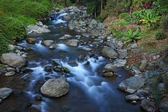 Savegre River (ashockenberry) Tags: ashleyhockenberryphotography rainforest costa rica jungle beautiful beauty landscape rocks current flow river natural nature naturephotography native vacation travel tourism tropical majestic mountains central america green lush