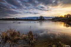 Cour sur Loire sunset (v.hajek) Tags: loiretcher longexposure loirevalley 41 loire borddeloire coucherdesoleil landscape coursurloire paysage sunset poselongue france fr