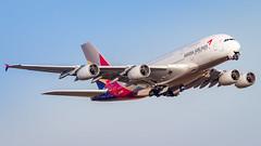 Airbus A380-841 HL7626 Asiana Airlines (William Musculus) Tags: plane airplane spotting aviation airport fra fraport eddf frankfurtmain frankfurt am main rhein airbus a380841 hl7626 asiana airlines a380800 oz aar william musculus