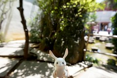 Liberdade (Yuna / resin.elves) Tags: bjd abjd balljointeddoll loongsoul meiji moon bunny