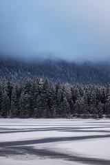 Winter am Ödensee (Harde) Tags: 2006 reise aussee baum eis natur urlaub winter wolke ödensee österreich salzkammergut schnee wald kalt frost trees wood forest lake ice cold clouds frozen