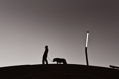 During a walk (reiko_robinami) Tags: street streetphotography silhouette monochrome outdoors dog blackandwhite yokohama japan