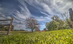 Beautiful Days in the Garden (Michael F. Nyiri) Tags: southcoastbotanicgarden sky clouds cloudscapes grass perspective garden palosverdespeninsulacalifornia palosverdes ranchopalosverdes
