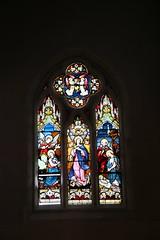 IMG_3311 (gervo1865_2 - LJ Gervasoni) Tags: st stephens catholic church cathedral internal stained glass windows 2019 photographerljgervasoni